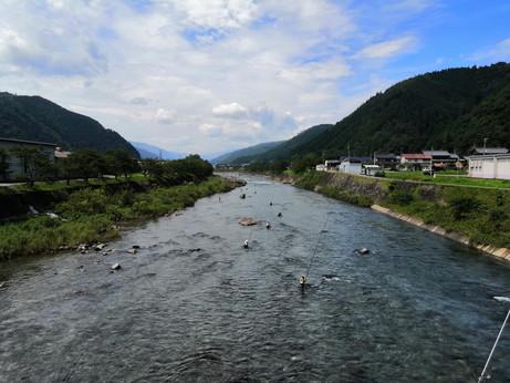 282 黒田峠(県道白鳥板取線)でヒルクライム!コースや標高は?